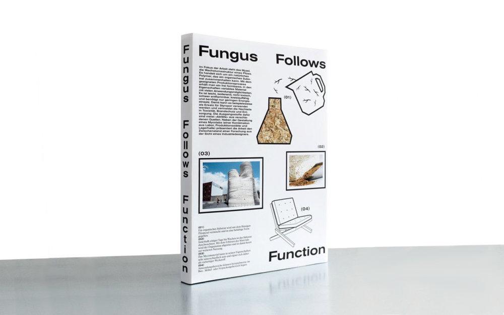 fungus_wide.jpg