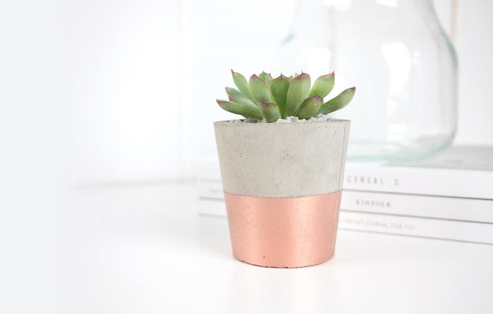 cactus_copper_01.jpg