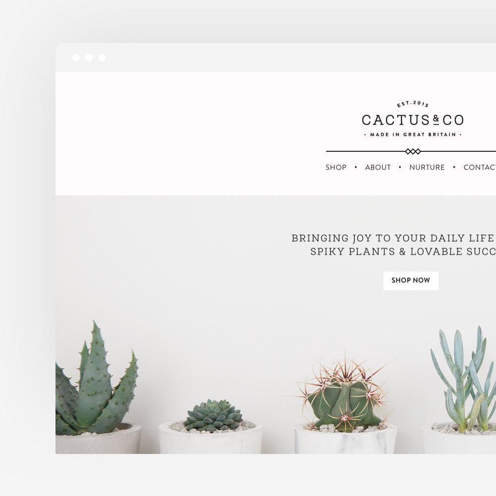 cactus_thumb_05_square.jpg