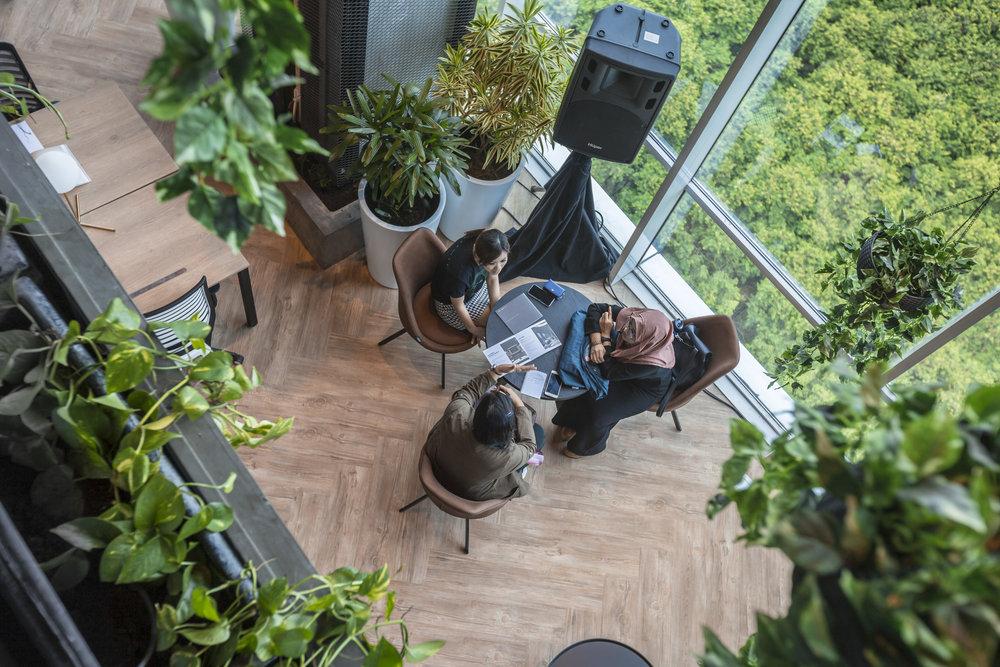 Greenhouse 007.jpg