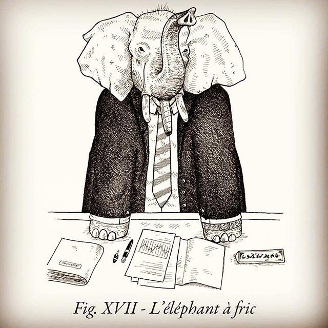 ENCYCLOPAEDIA #3 by Félix Pommier  ulule.com/encyclopaedia  30 animaux que la science vous a toujours cachés.  PRÉ-COMMANDEZ LE DEUXIÈME TOME SUR ULULE AVANT LE 22 OCTOBRE  #ink #handdrawing #jeudemot #animalier #encyclopedie #science #livre #éléphant #défense #flouze #pognon #oseille #pèze #ronds #maille #nerfdelaguerre