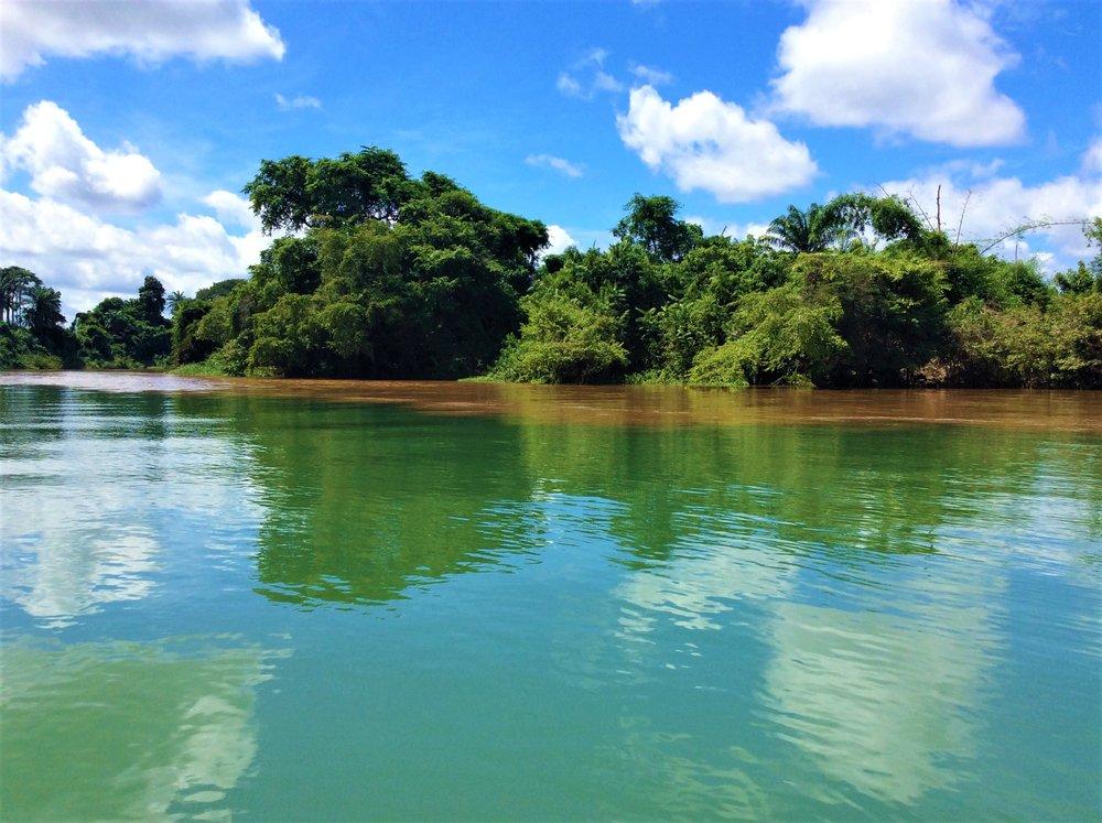 THE WATER CONFLUENCE | The Ajala Bug