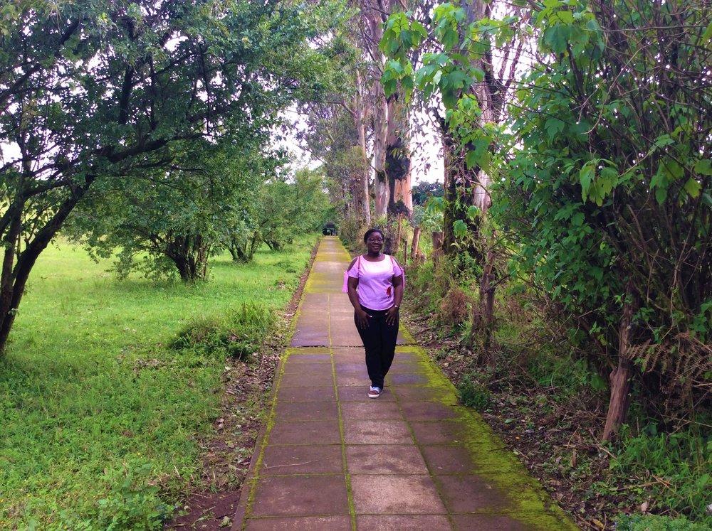 BECHEVE NATURE RESERVE | Obudu Conservation Center