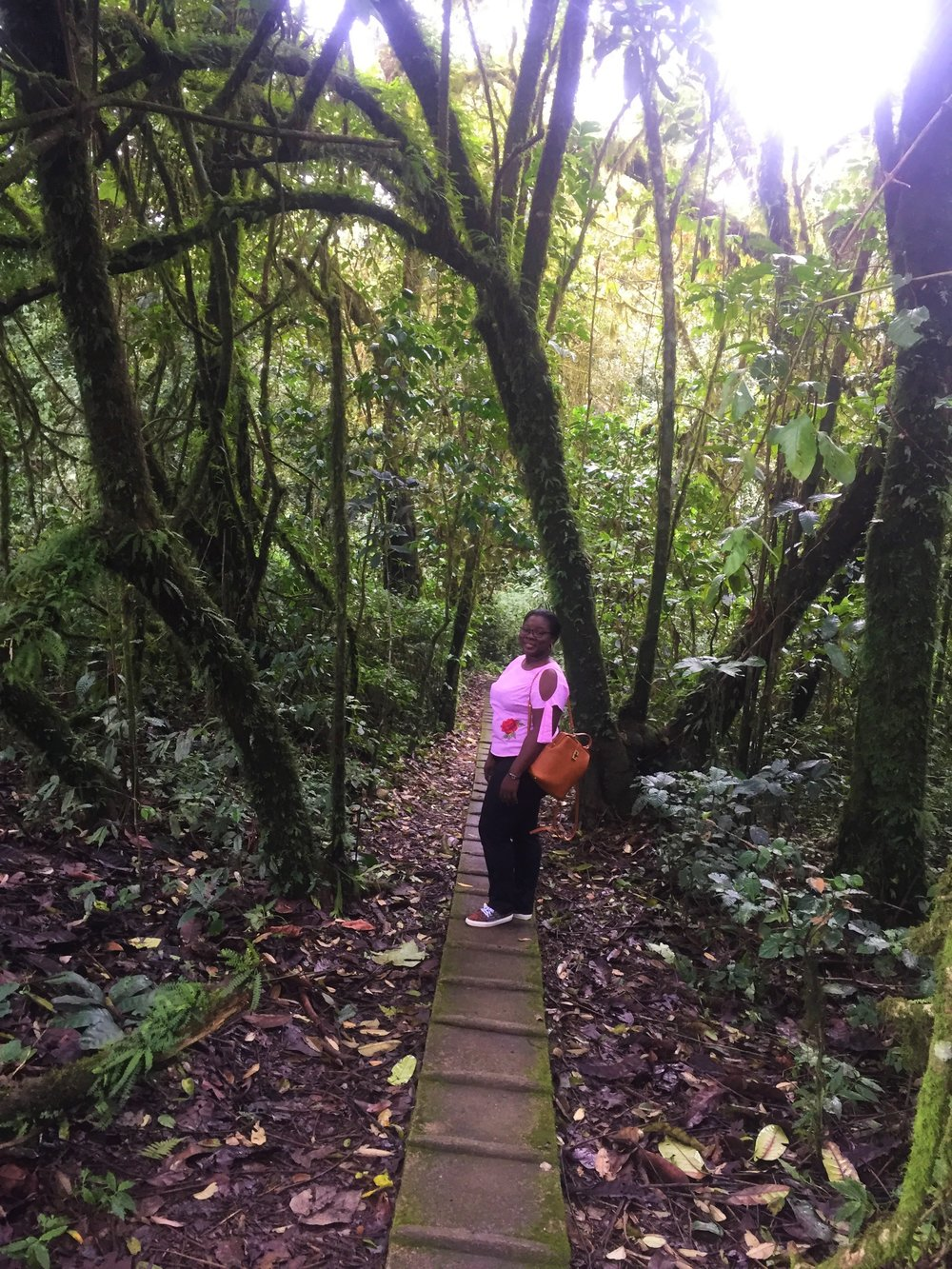 WALKWAY TO MONKEY FACE | Obudu Conservative Center