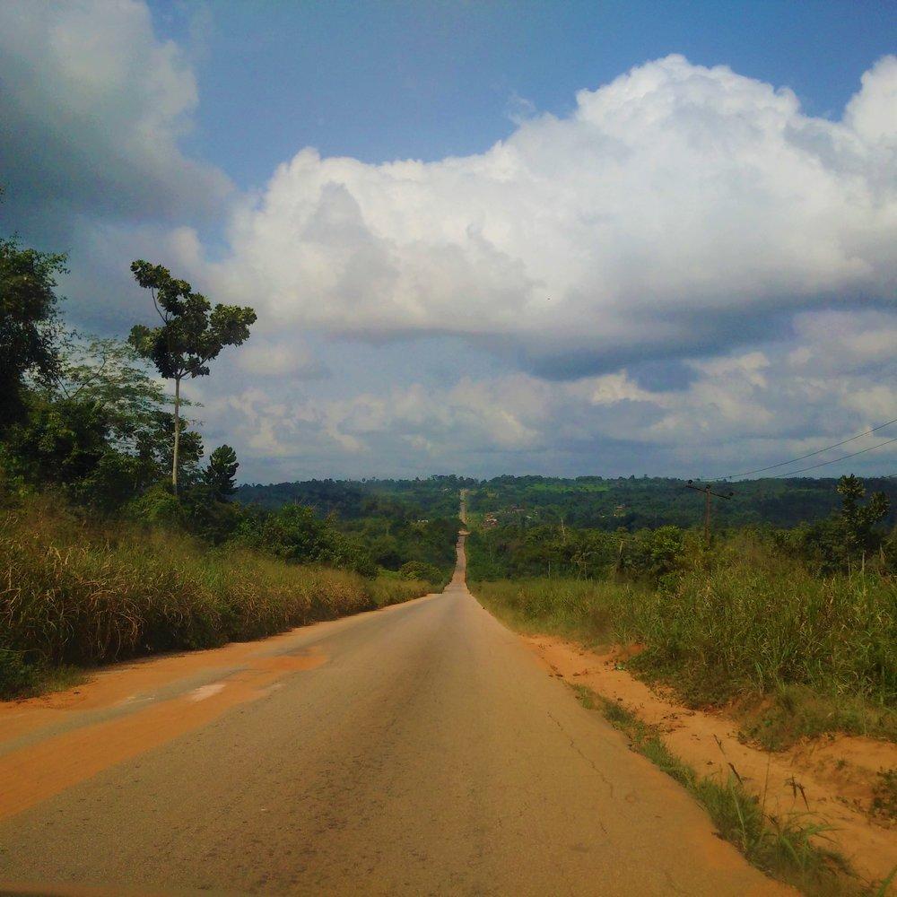 Road to Okomu National Park