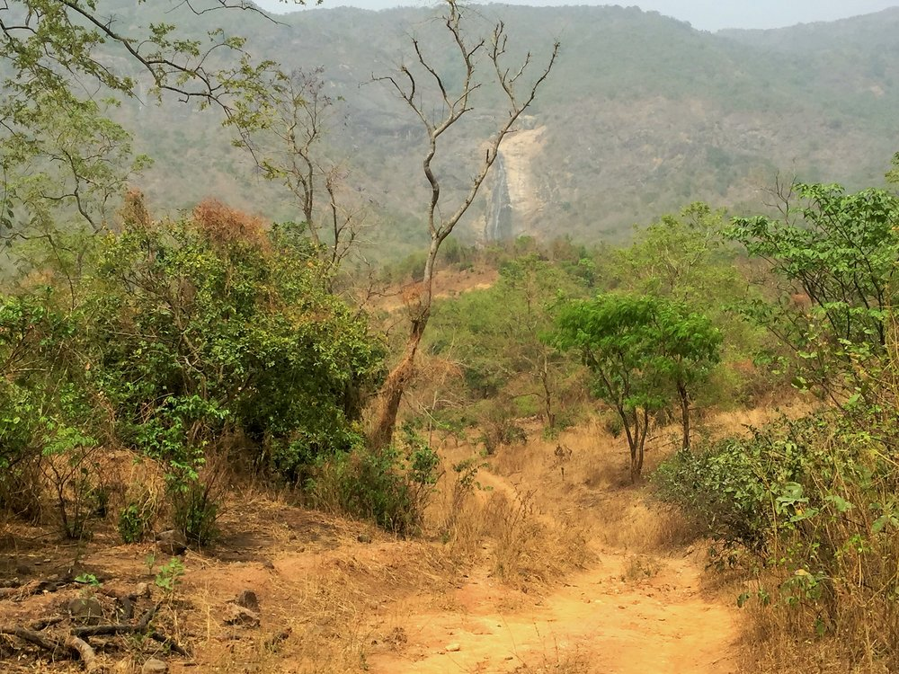 A view of the waterfall from a distance. We visited during the dry season