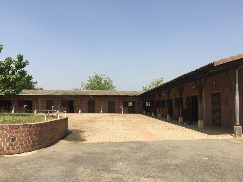 A complete view of the horse stable