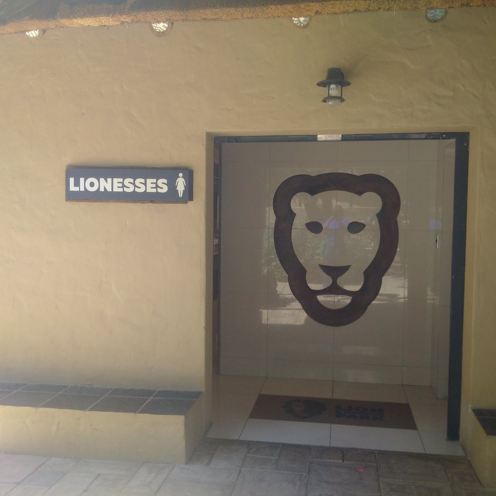 The convenience : His and Hers; Lion and Lionesses