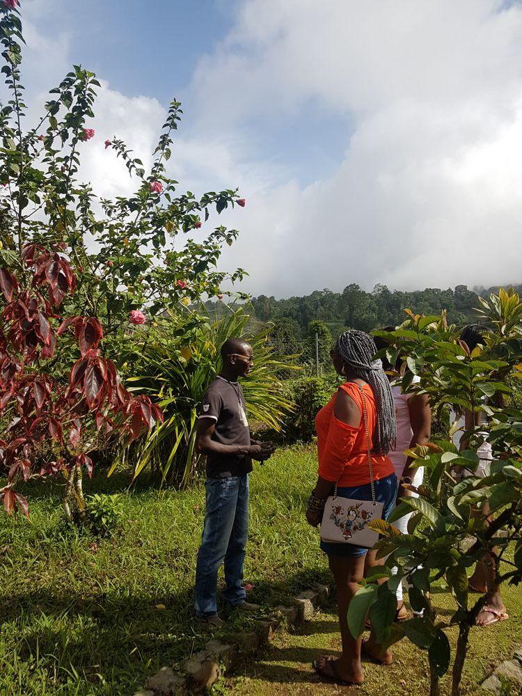Botanical Gardens at Bom Sucesso