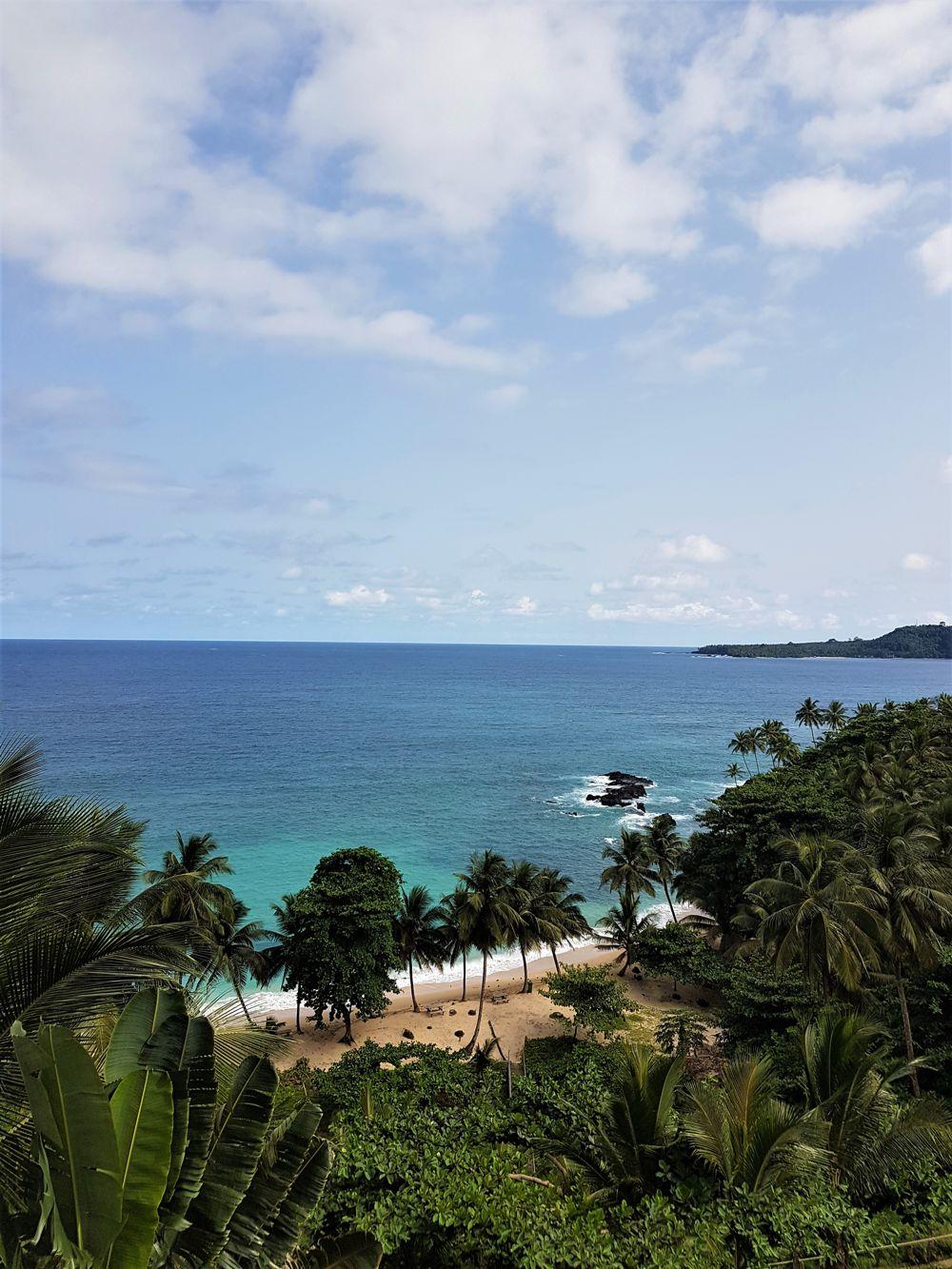 Sao Tome | The Ajala Bug