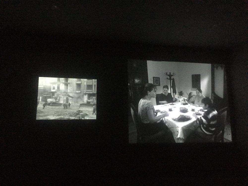 Gulsun Karamustafa documentary | The Ajala Bug