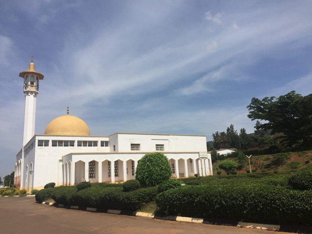 Natural History Museum of Rwanda  | The Ajala Bug
