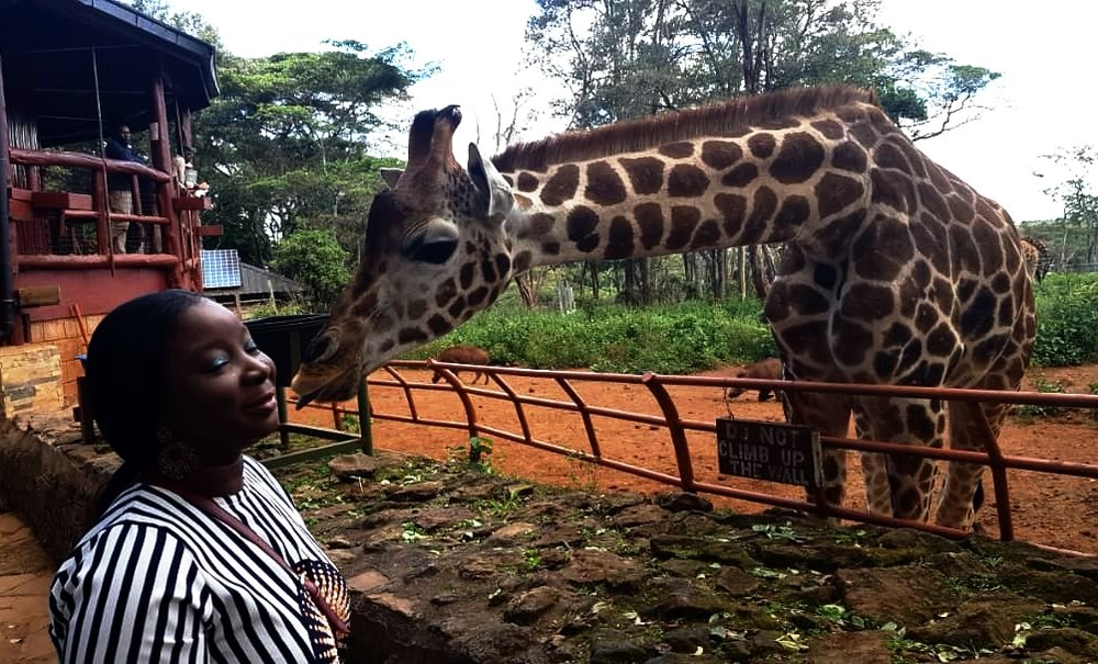 Giraffe Centre | The Ajala Bug