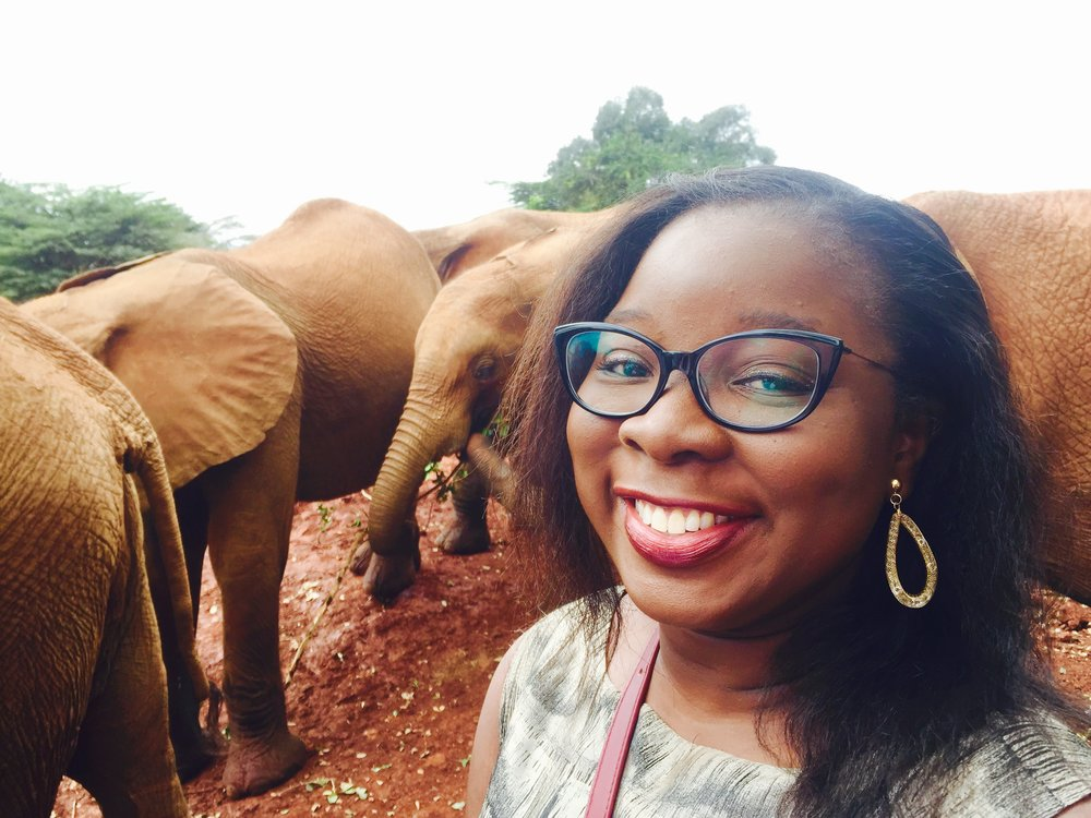 David Sheldrick Wildlife Trust Elephant Orphanage | The Ajala Bug