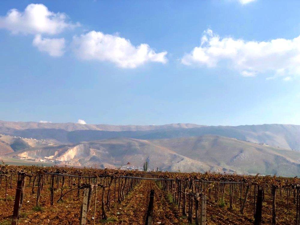 Anti-Lebanon mountain