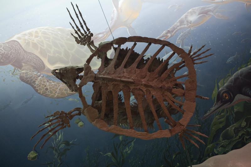 MANIFIESTO MEDIO AMBIENTAL - El ser humano convierte la tierra y el mar en gigantescos basureros.