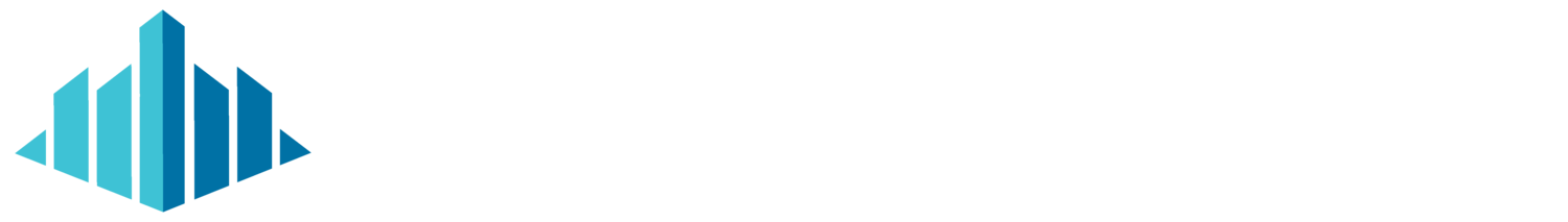 The Society for Construction Solutions