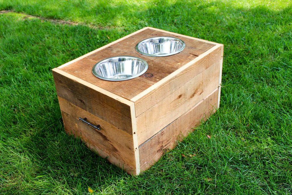 Dog Dish
