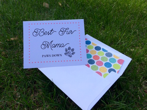 52 Weeks of Mail: Week 18 Mother's Day Cards - Fur Mama Dog Cat Mom
