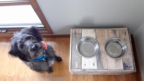 Rustic Dog Bowl Stand Food Storage 5
