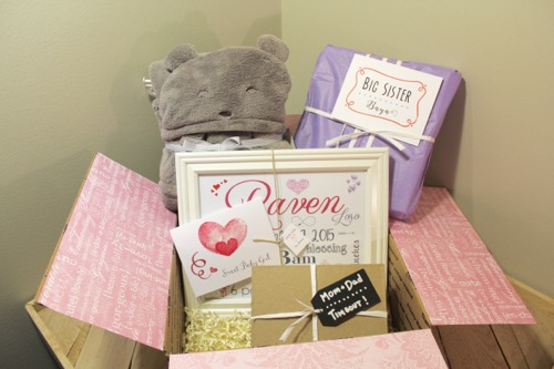 52 Weeks of Mail: Week 40 | New Baby Family Package 1 Baby Girl Birth Stats Wall Art and family gift package