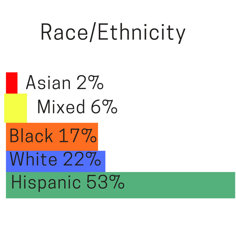 race ethnicity.png