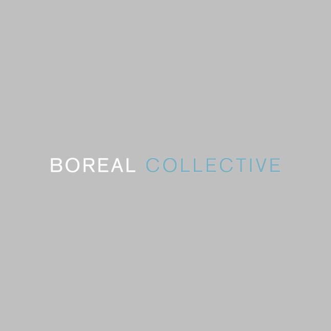 BOREAL-LOGO-400px copy_web2.jpg