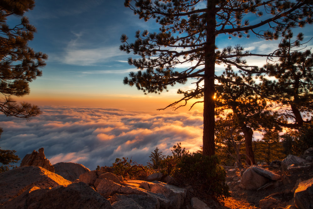 HDR_NR_MT BALDY SUNSET OVER CLOUDS TREE SIL.jpg