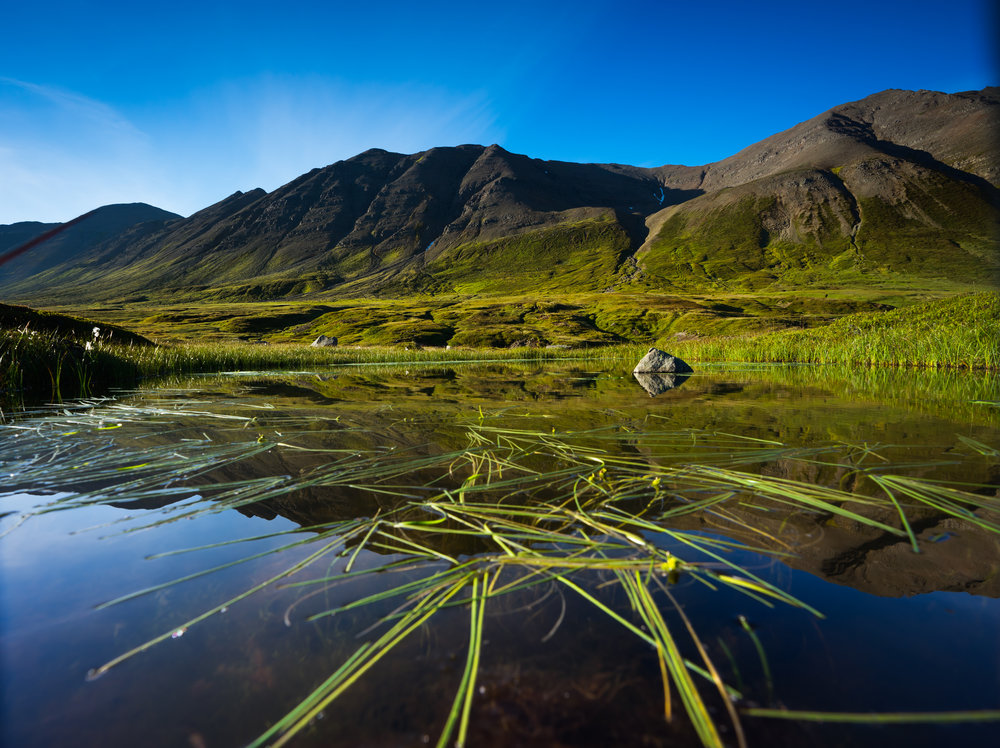 Iceland_044.jpg