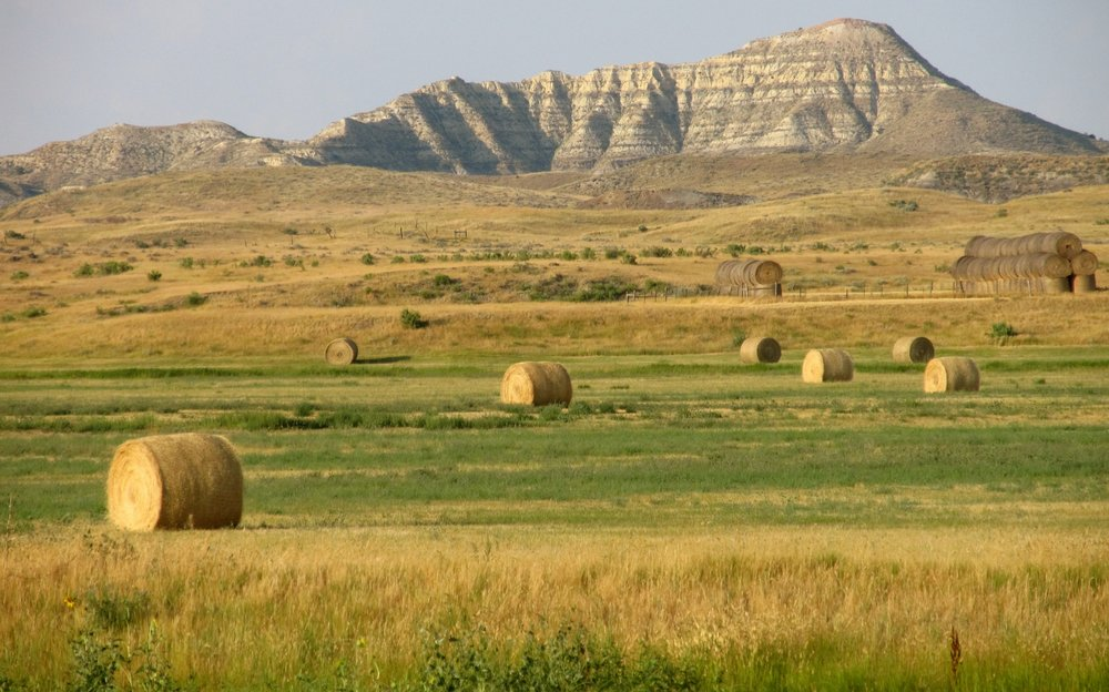 Hay bales on Highway 59