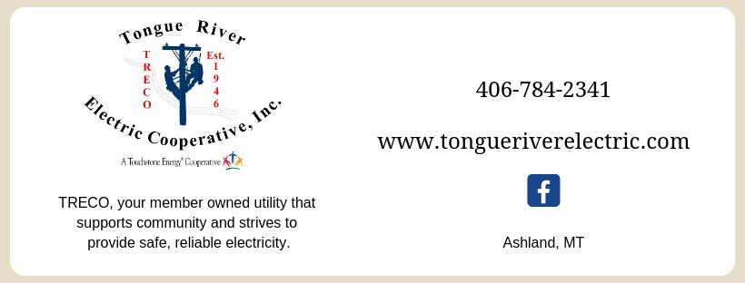 www.tongueriverelectric.com