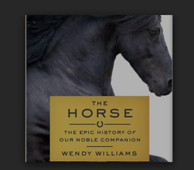 Book cover photo.jpg