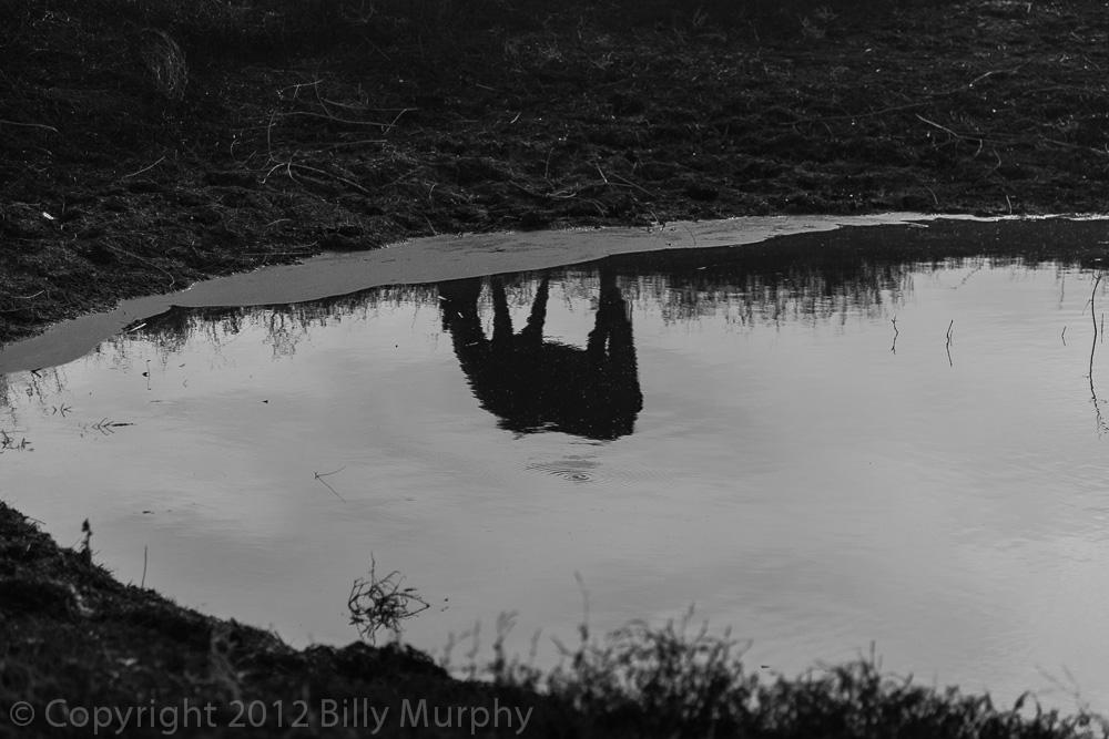 Billy Murphy Photography