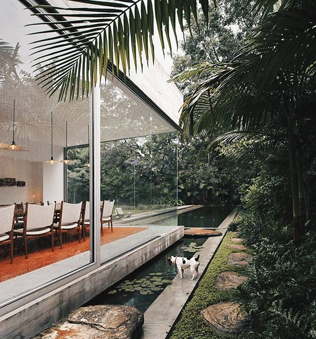 Dream project: clean, highly stylish, glass house. Yucatán House by Isay Weinfeld. #modern #minimal with tailored lines. #architecturelover #interiordesigner #indoor #outdoor #designlife #designliving #cleanlines