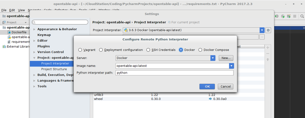 PyCharm Profession in Linux with Docker CE.