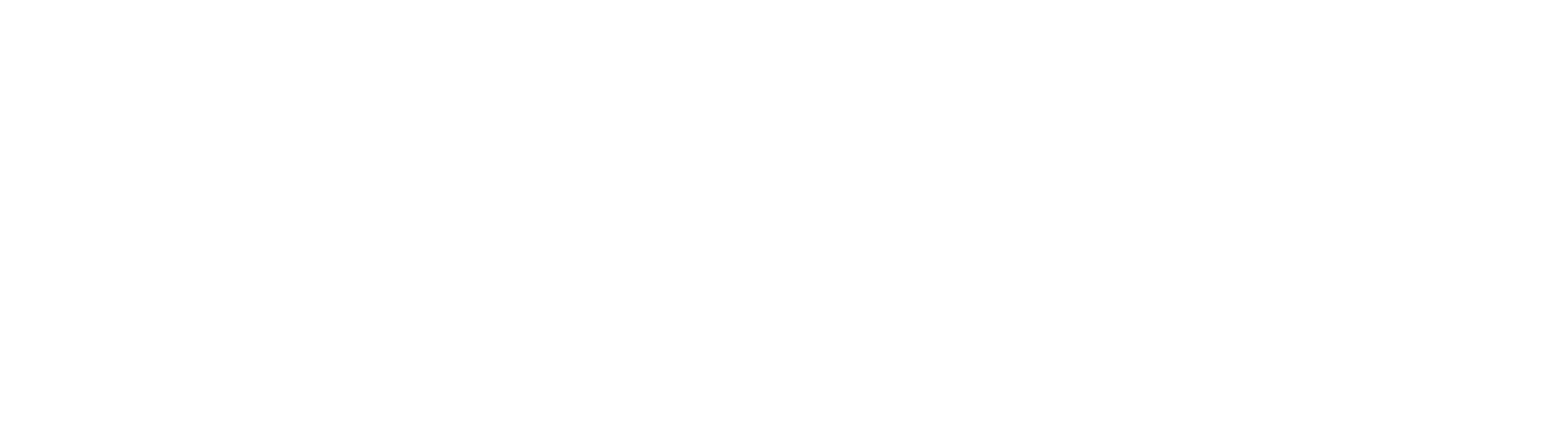Brooklyn Bike Tours | Brooklyn Giro Bike Tours Official Site
