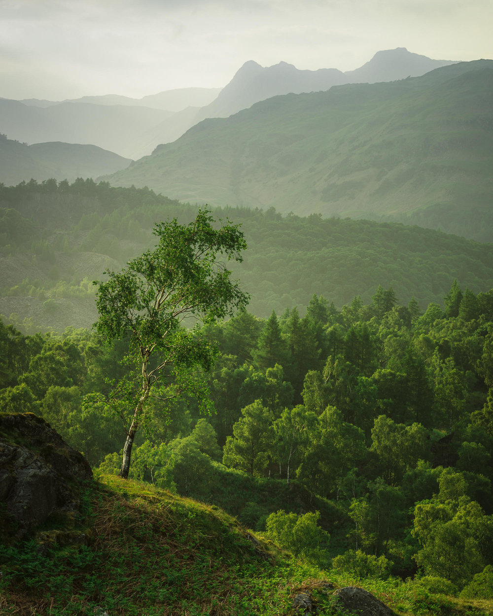 Green Gown of Summer - Holme Fell