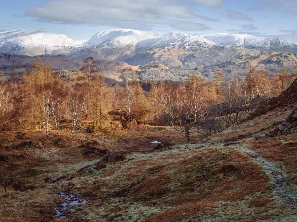 Holme Ground Vista
