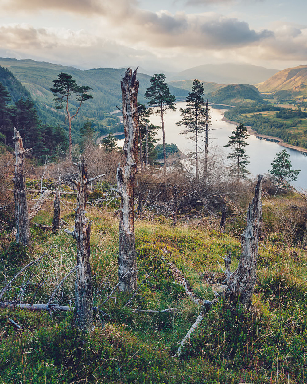 Behind the Sentinels - Thirlmere
