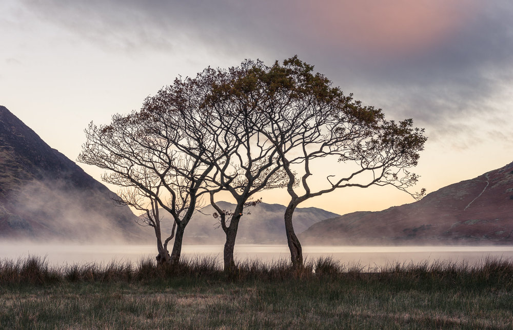 A Sense of Belonging - Crummock Water