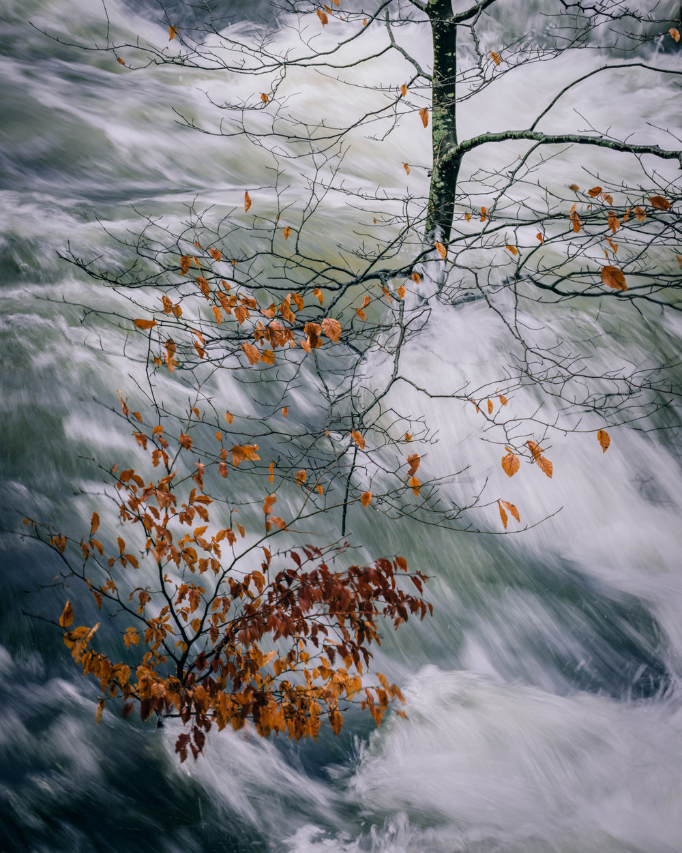 Spate - River Brathay