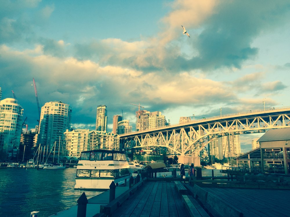 My Practice - I practice as an occupational therapist in beautiful Vancouver, B.C. I currently see clients with needs related to chronic pain, fatigue, arthritis and women's health.