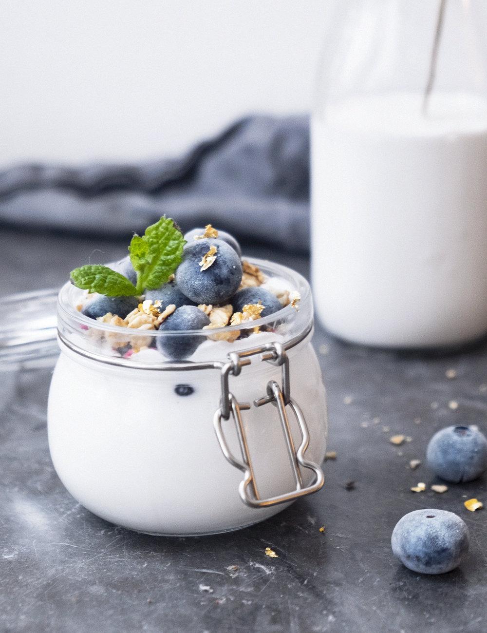 vegansk_hemmagjord_kokosyoghurt_recept.jpg