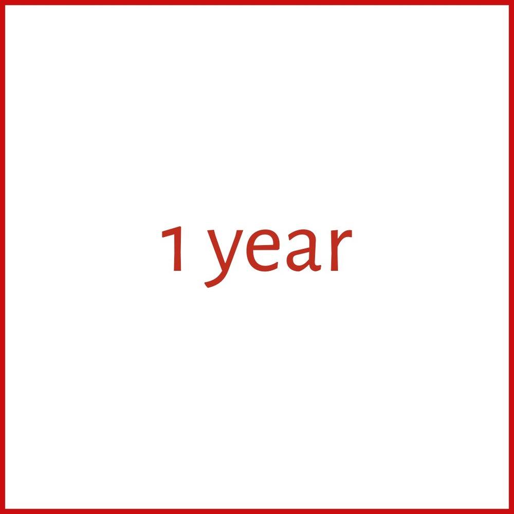1 year.jpg