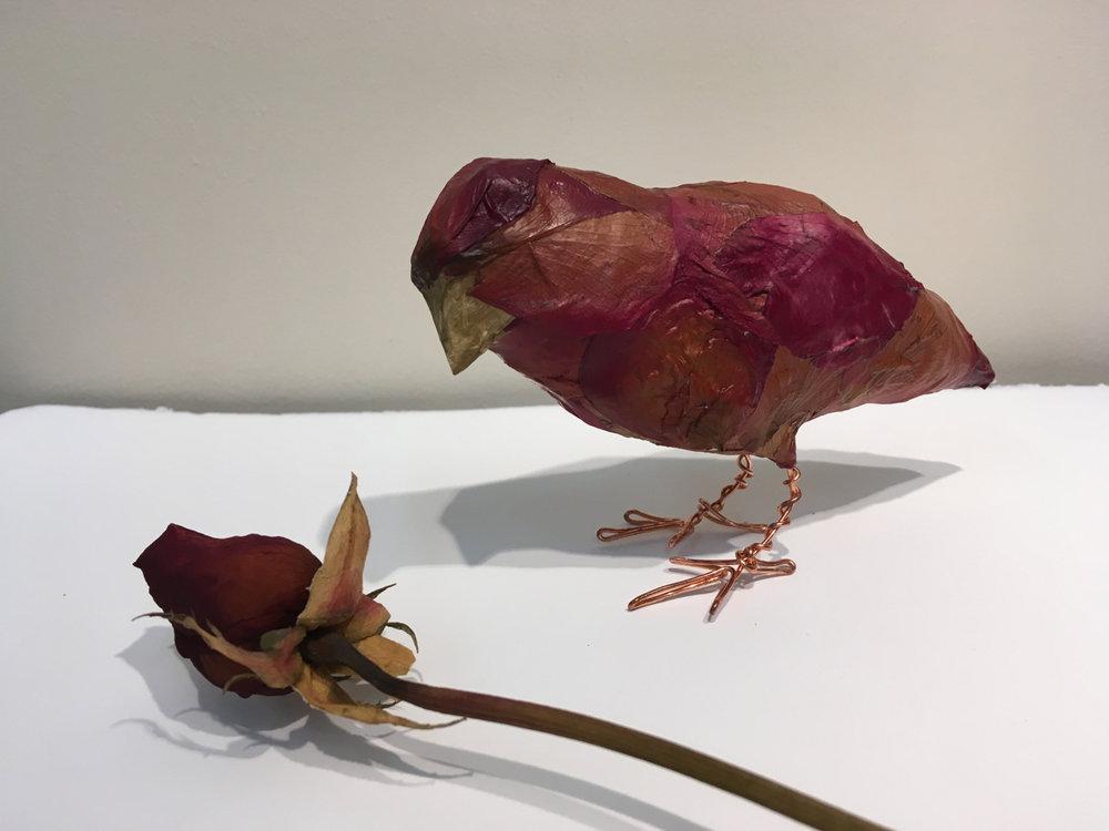 Special Materials Birds