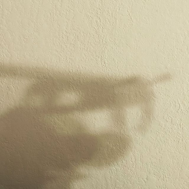 That is an aggressive shadow on my wall.