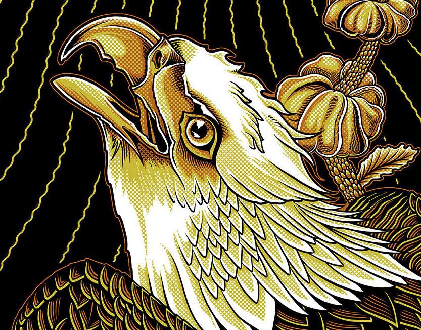 eagle - 8.5