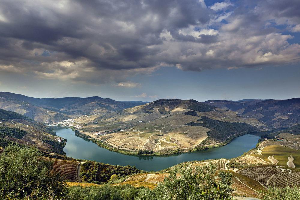Alto Douro Wine Region