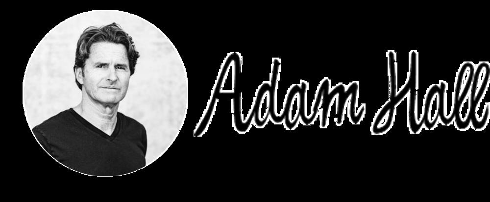 AdamSig (1).png