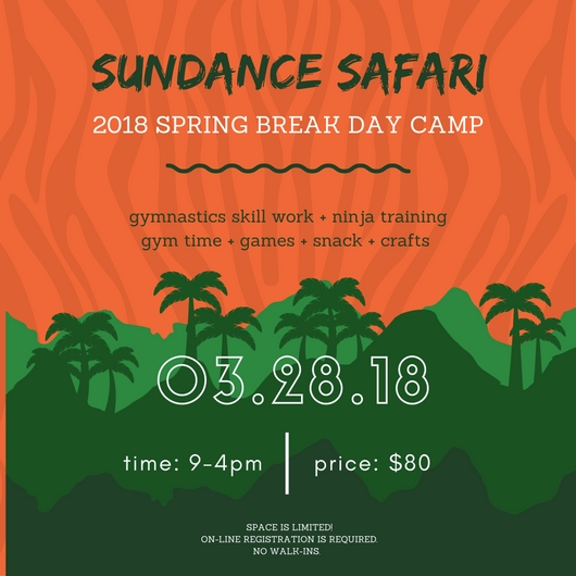 spring break camp flyers (1).jpg